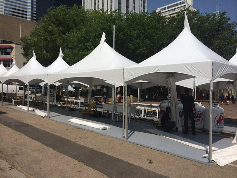COSCO fine- quality aluminum frame canopy tents owner cold-proof