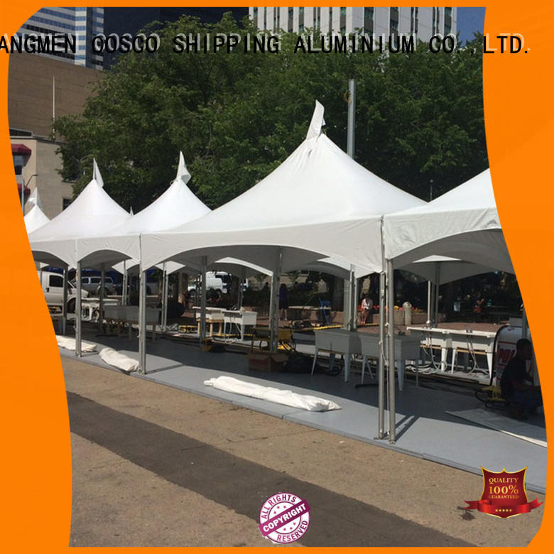 Peak Marquee Frame Tent 10x10 Canopy