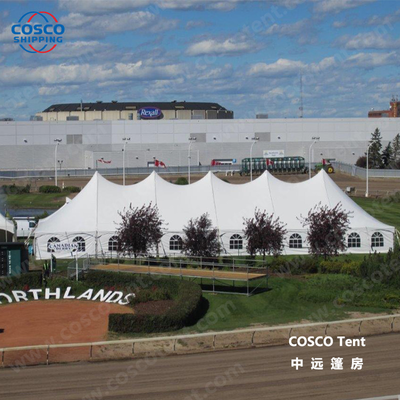 COSCO newly camping tents for sale producer snow-prevention-1