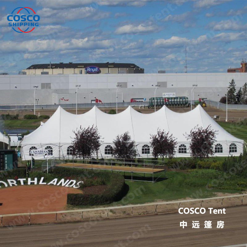 COSCO inexpensive peg and pole marquee tent for engineering