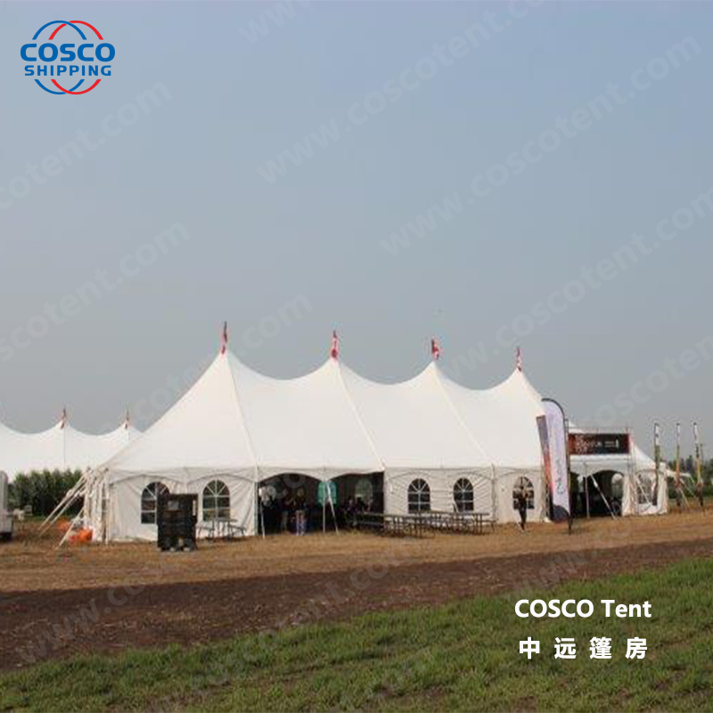 COSCO newly camping tents for sale producer snow-prevention-2